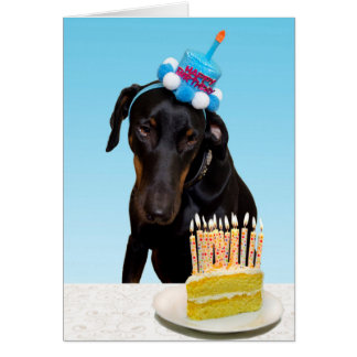Funny dog with cake Birthday Card