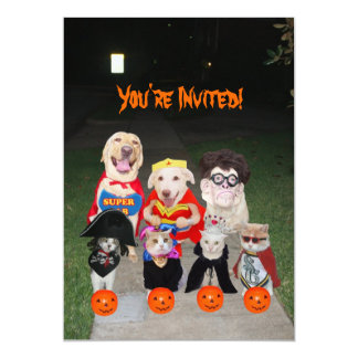 Funny Dogs & Cats Halloween 13 Cm X 18 Cm Invitation Card