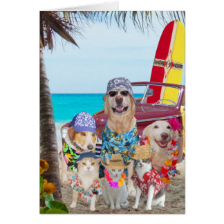 Funny Dogs/Cats Hawaiian/Surfer Birthday Card