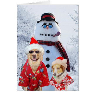 Funny Dogs Cool Yule Greeting Card