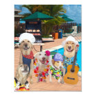 Funny Dogs Customisable Pool Party/BBQ Invitation