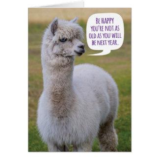 Funny Dolly Llama Birthday Wisdom Greeting Card
