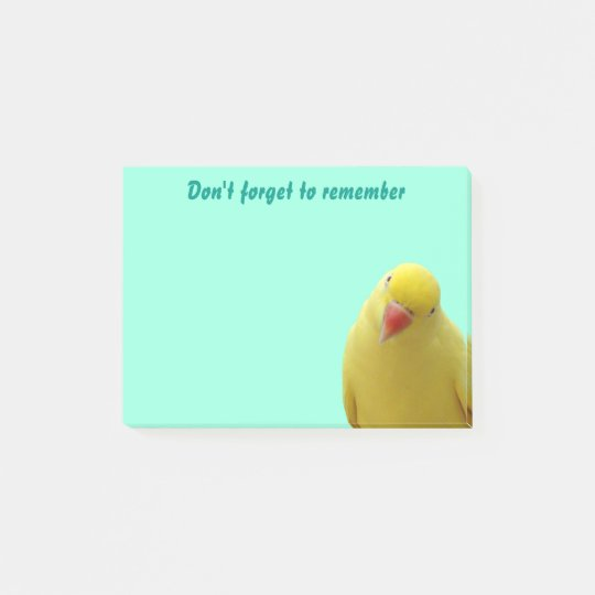 """Funny """"Don't Forget"""" Bird Sticky Notes"""