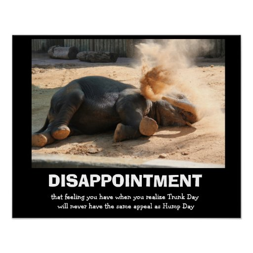 Funny Elephant, DISAPPOINTMENT (not hump day) Poster