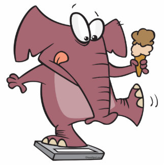 funny elephant on scale with ice cream cut outs