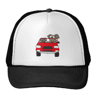 Funny Elephants in Red Car Cap
