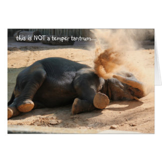 Funny Elephany birthday card, No more nutella!! Card