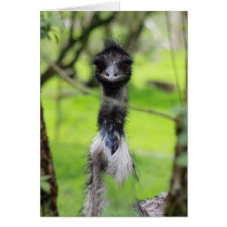 Funny emu card