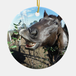 Funny Face brown horse Christmas Ornament