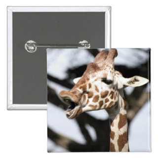 Funny faced reticulated giraffe, San Francisco Pinback Buttons