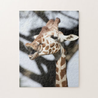 Funny faced reticulated giraffe, San Francisco Jigsaw Puzzle