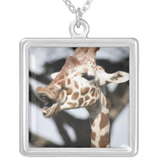 Funny faced reticulated giraffe, San Francisco Square Pendant Necklace