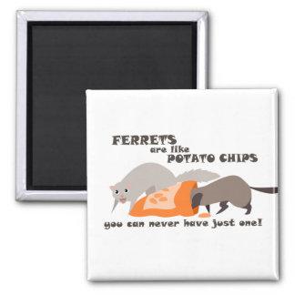 Funny Ferret Magnet