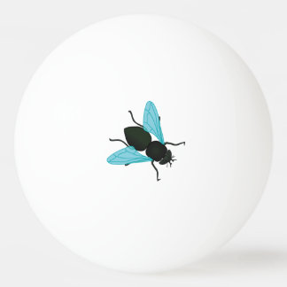 Funny - Flyswatter fly (housefly),