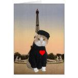 Funny French Cat/Kitty Valentine