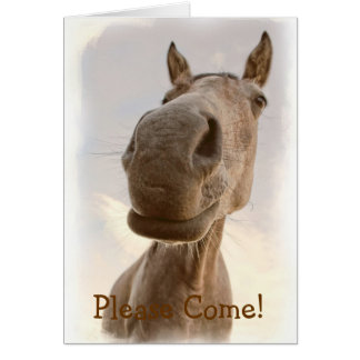 Funny Friendly Horse Invitation Greeting Card