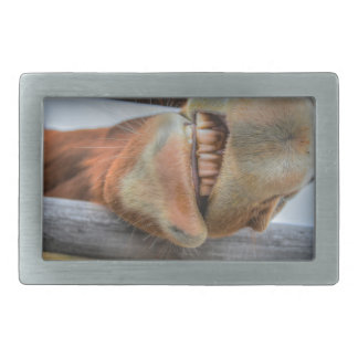 Funny Friendly Horse Muzzle and Teeth Belt Buckle