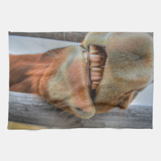 Funny Friendly Horse Muzzle and Teeth Towel
