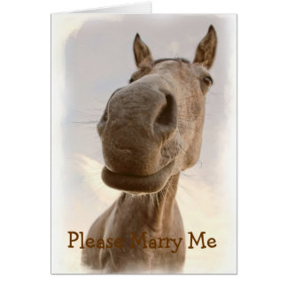 Funny Friendly Horse Please Marry Me Card