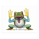 Funny Frog postcard post card