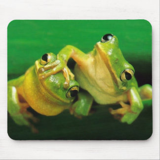 Funny Frogs Mouse Mat