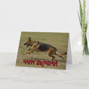 Funny German Shepherd birthday card
