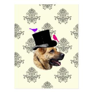 Funny German shepherd dog Postcards