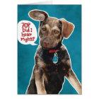 Funny German Shepherd Puppy 70th Birthday Card