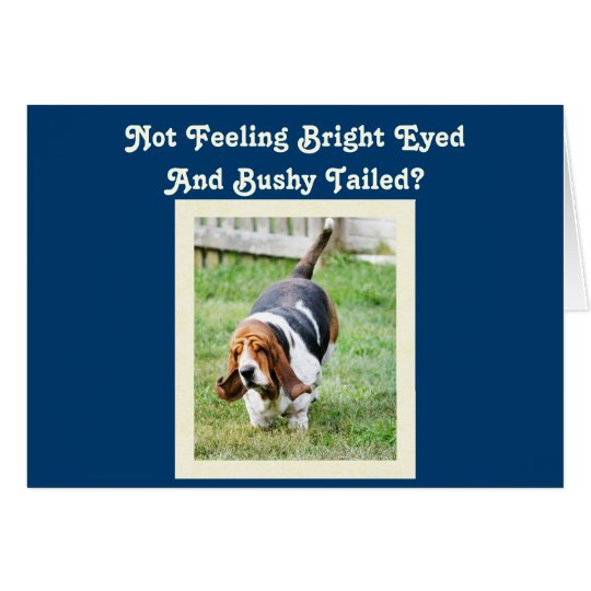 "Funny ""Get Well"" Card w/Cute Basset Hound &"