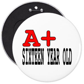 Funny Gifts for 16 Year Olds A+ Sixteen Year Old Buttons