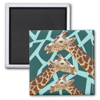 Funny Giraffe Print Teal Blue Wild Animal Patterns Refrigerator Magnet