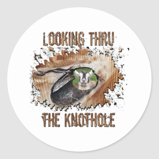 Funny Goat Picture Smiling Goat Classic Round Sticker