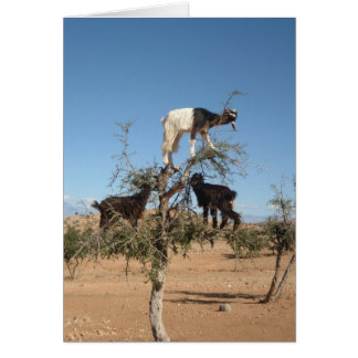 Funny goats in a tree greeting card