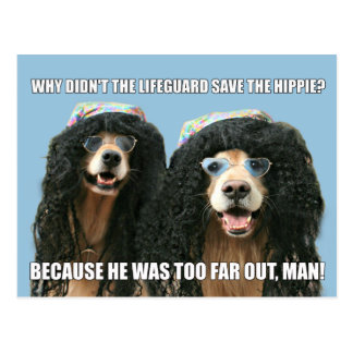 Funny Golden Retriever Lifeguard Hippie Joke Postcard