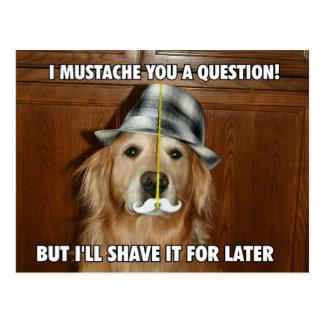 Funny Golden Retriever Mustache You a Question Postcard