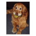 Funny Golden Retriever with Balls  Birthday Card