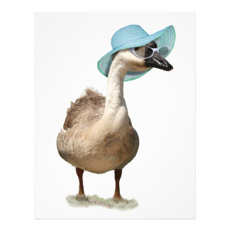 Funny Goose with Summer Hat 21.5 Cm X 28 Cm Flyer