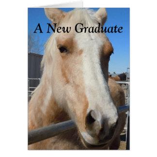 Funny Graduate Graduation Congratulations Horse Greeting Card