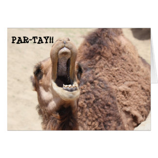 Funny Graduation Card, Party Camel Greeting Card