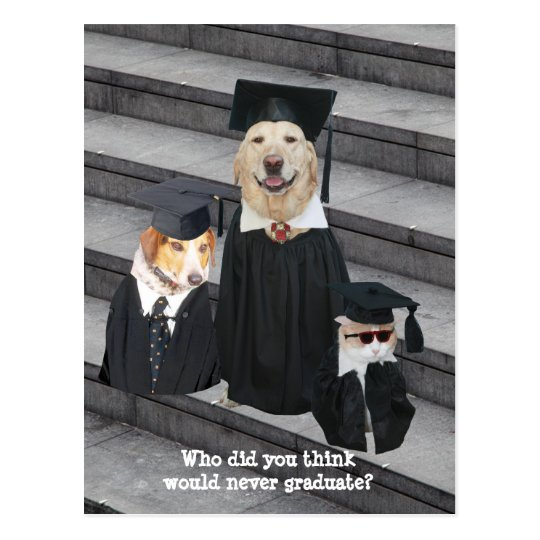 Funny Graduation Customisable Announcement Postcar Postcard