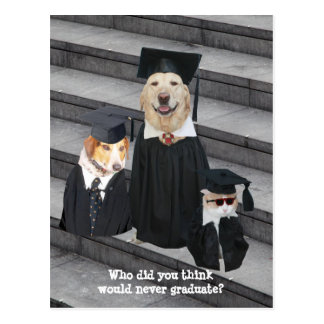 Funny Graduation Customizable Announcement Postcar Postcard