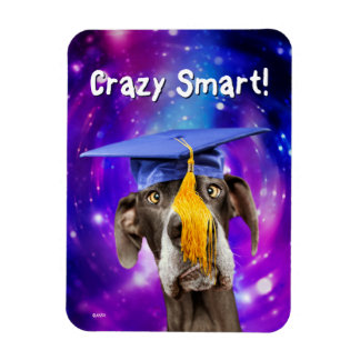 Funny Graduation Dog Wearing Hat Magnet