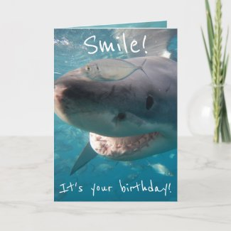 Funny Great White Shark Birthday Card