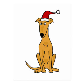 Funny Greyhound Dog in Santa Hat Christmas Art Postcard