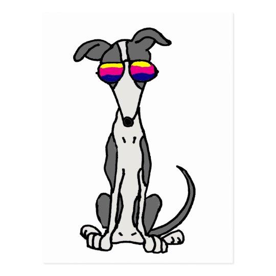 Funny Greyhound Dog in Sunglasses Postcard
