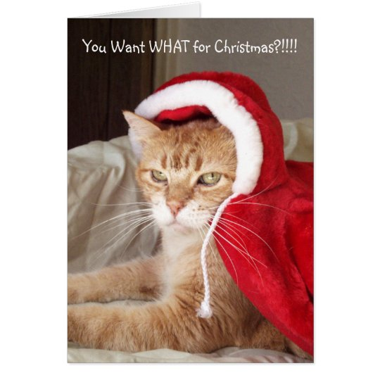 Funny Grumpy Ginger Cat Christmas Card Humour