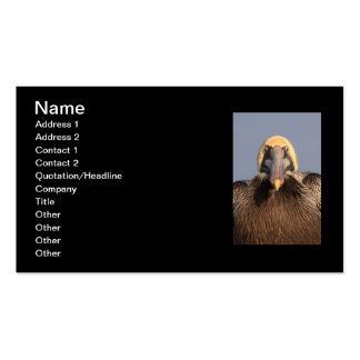 Funny Grumpy Pelican Pack Of Standard Business Cards