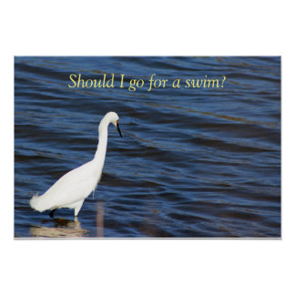 Funny Heron Poster
