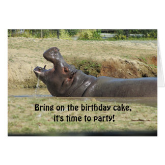 Funny Hippopotamus Birthday Greeting Card