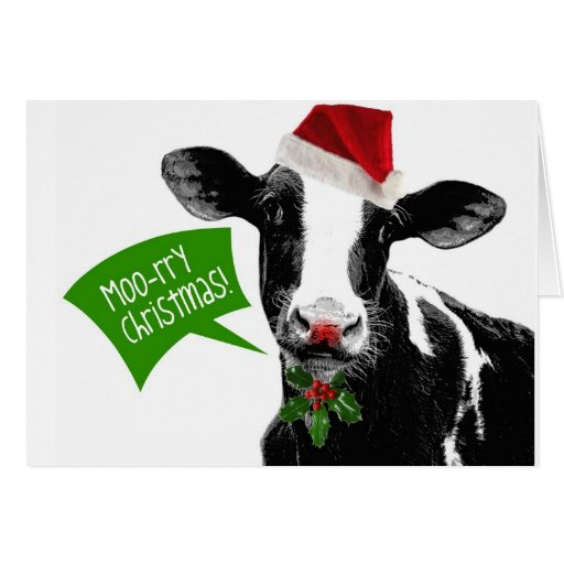 Funny Holiday Cow Merry Moo-rry Christmas Greeting Cards